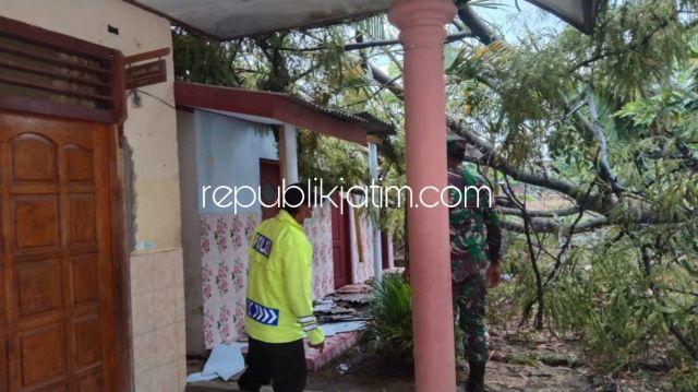 Pohon Tumbang Saat Hujan Deras Disertai Angin Kencang Timpa Gedung SDN di Ponorogo